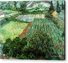 Field With Poppies Acrylic Print by Vincent Van Gogh