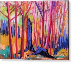 Fiery Sunrise Acrylic Print by John  Williams