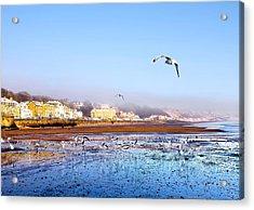 Filey Beach Acrylic Print by Svetlana Sewell