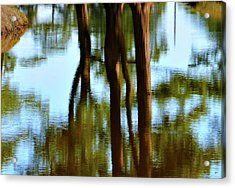 Fine Art Photography - Reflections Acrylic Print by Gerlinde Keating - Keating Associates Inc
