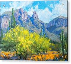Finger Rock Tucson Az Acrylic Print by Becky Joy