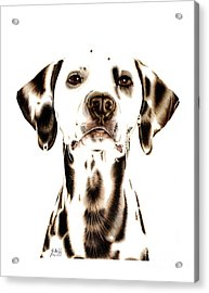 Fire Fighter's Best Friend Acrylic Print by Sheryl Unwin