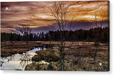 Fire In The Pine Lands Sky Acrylic Print by Louis Dallara