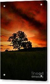 Fire On The Sky Acrylic Print by Angel  Tarantella