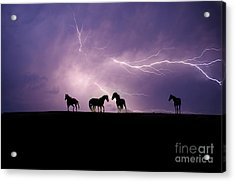 Fire Storm Acrylic Print by Lisa Dearing
