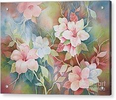 First Blush Acrylic Print by Deborah Ronglien