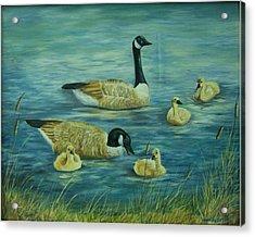 First Lesson Acrylic Print by Wanda Dansereau