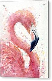 Flamingo - Facing Right Acrylic Print by Olga Shvartsur