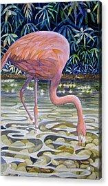 Flamingo Fishing Acrylic Print by Martha Ayotte