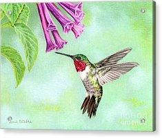Flight Of Fancy Acrylic Print by Sarah Batalka