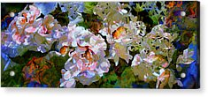 Floral Fiction 2 Acrylic Print by Hanne Lore Koehler