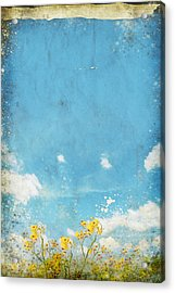Floral In Blue Sky And Cloud Acrylic Print by Setsiri Silapasuwanchai
