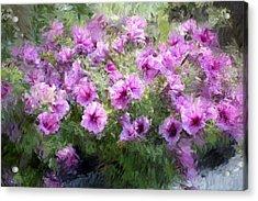 Floral Study 053010 Acrylic Print by David Lane