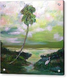 Florida Coastal Marsh Acrylic Print by Patricia Taylor