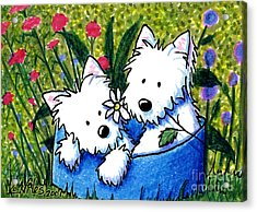 Flower Bed Westies Acrylic Print by Kim Niles
