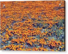 Flower Hill Acrylic Print by Russ Harris