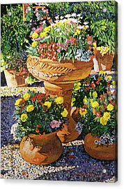 Flower Pots In Sunlight Acrylic Print by David Lloyd Glover