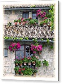 Flower Pots In Windows In Arles Acrylic Print by Carson Ganci