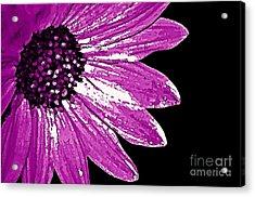 Flower Power  Acrylic Print by Juls Adams