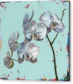 Flowers #10 Acrylic Print by David Palmer