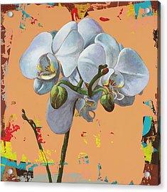 Flowers #12 Acrylic Print by David Palmer