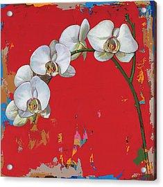 Flowers #14 Acrylic Print by David Palmer