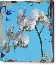 Flowers #15 Acrylic Print by David Palmer