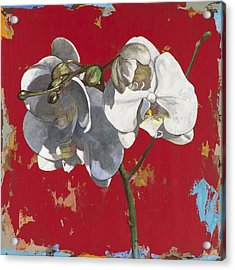 Flowers #6 Acrylic Print by David Palmer