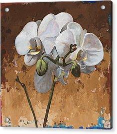 Flowers #7 Acrylic Print by David Palmer
