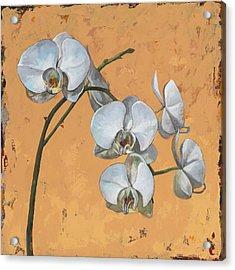 Flowers #8 Acrylic Print by David Palmer