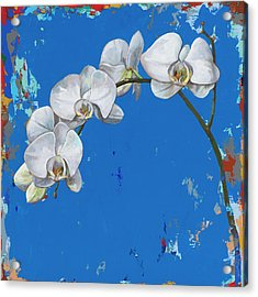 Flowers #9 Acrylic Print by David Palmer