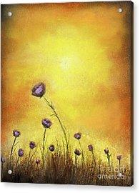 Flowers Acrylic Print by Gabriela Valencia