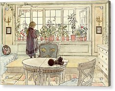 Flowers On The Windowsill Acrylic Print by Carl Larsson
