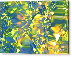 Fluttering Of Color Acrylic Print by Sybil Staples