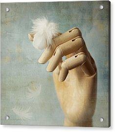 Fly Far Away Acrylic Print by Amy Weiss