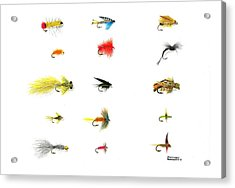 Fly Fishing Nymphs Wet And Dry Flies Acrylic Print by Sharon Blanchard