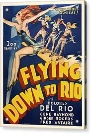 Flying Down To Rio  Acrylic Print by Mountain Dreams