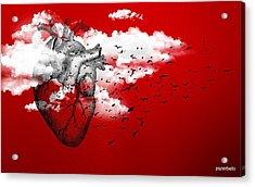 Flying High Acrylic Print by Paulo Zerbato