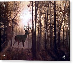Foggy Morning In Missouri Acrylic Print by Bill Stephens