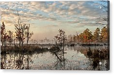 Foggy Morning In The Pines Acrylic Print by Louis Dallara