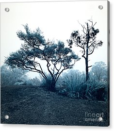 Foggy Mountaintop Acrylic Print by Russ Brown