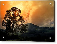 Foggy Sunrise Acrylic Print by Marty Koch