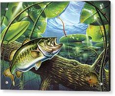 Fooled Again Bass II Acrylic Print by JQ Licensing