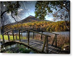 Foot Bridge Acrylic Print by Todd Hostetter
