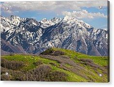 Foothills Above Salt Lake City Acrylic Print by Utah Images