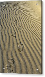 Footprints In The Sand Acrylic Print by Joe  Palermo