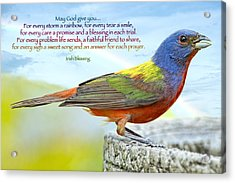 For Every Storm A Rainbow Irish Blessing Acrylic Print by Bonnie Barry
