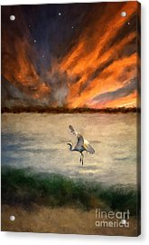 For Just This One Moment Acrylic Print by Lois Bryan