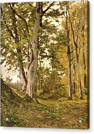 Forest At Fontainebleau Acrylic Print by Henri-Joseph Harpignies