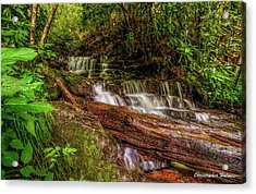 Forest Falls Acrylic Print by Christopher Holmes